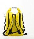 ZBP YELLOW BACK