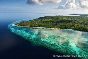 wakatobi-dive-resort-001