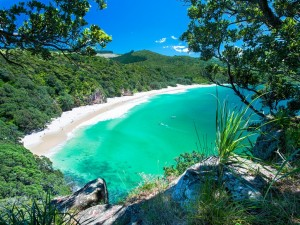 NZ-Best-Beaches-Chums-Bay