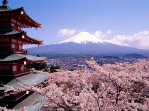 b9591b_Japan_Mount_Fuji_1420009762_x974 (1)